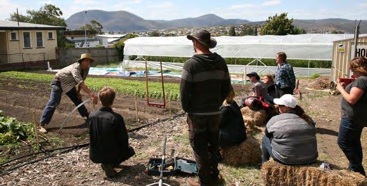 Green Thumbs At Hobart City Farm